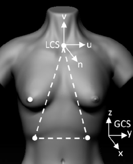 breast-movement-research